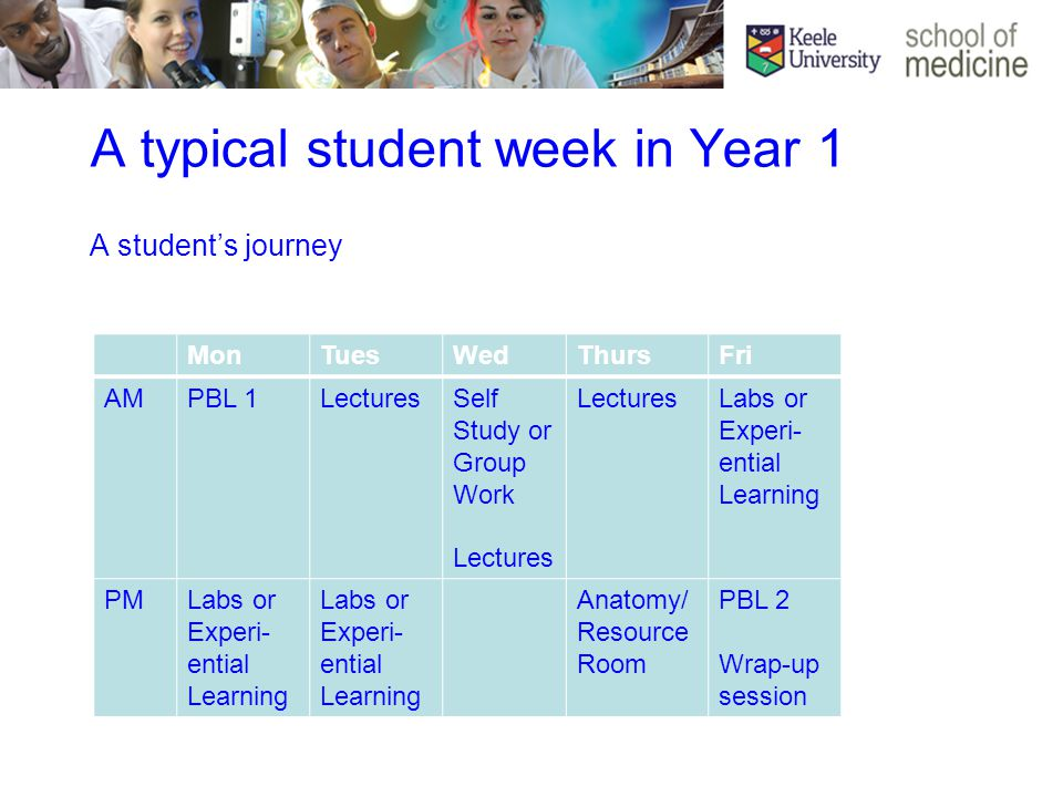 MonTuesWedThursFri AMPBL 1LecturesSelf Study or Group Work Lectures Labs or Experi- ential Learning PMLabs or Experi- ential Learning Anatomy/ Resource Room PBL 2 Wrap-up session A typical student week in Year 1 A student's journey