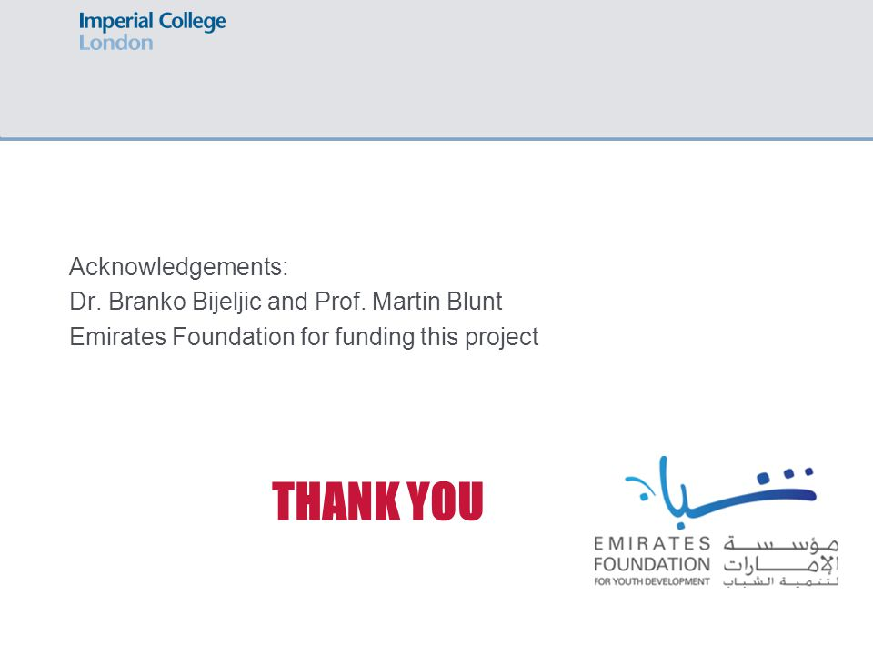 THANK YOU Acknowledgements: Dr. Branko Bijeljic and Prof.