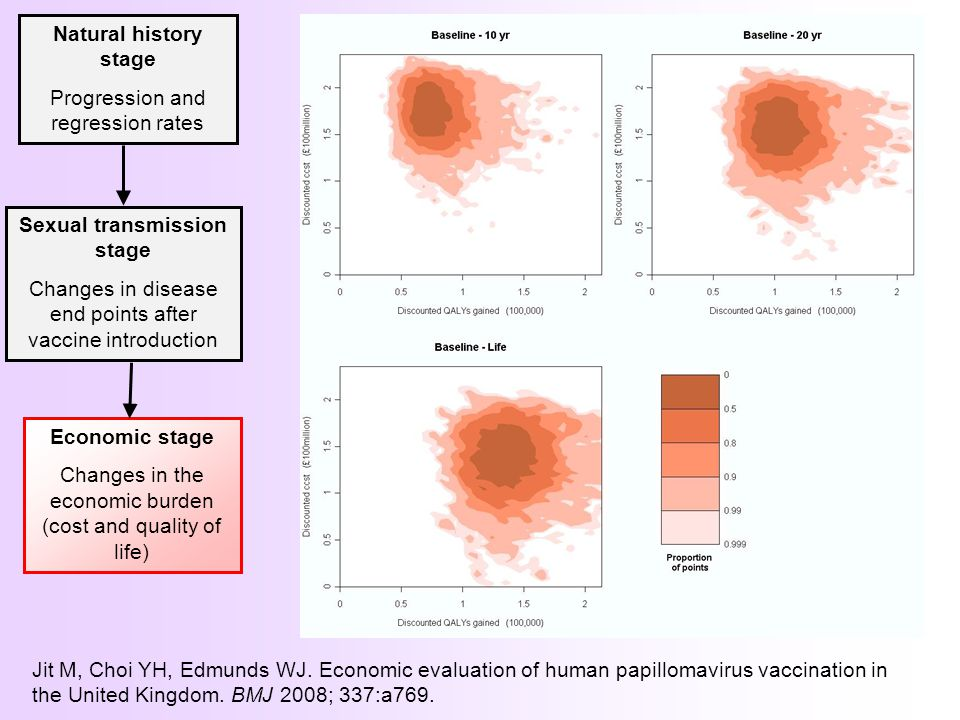 Sexual transmission stage Changes in disease end points after vaccine introduction Natural history stage Progression and regression rates Economic stage Changes in the economic burden (cost and quality of life) Jit M, Choi YH, Edmunds WJ.