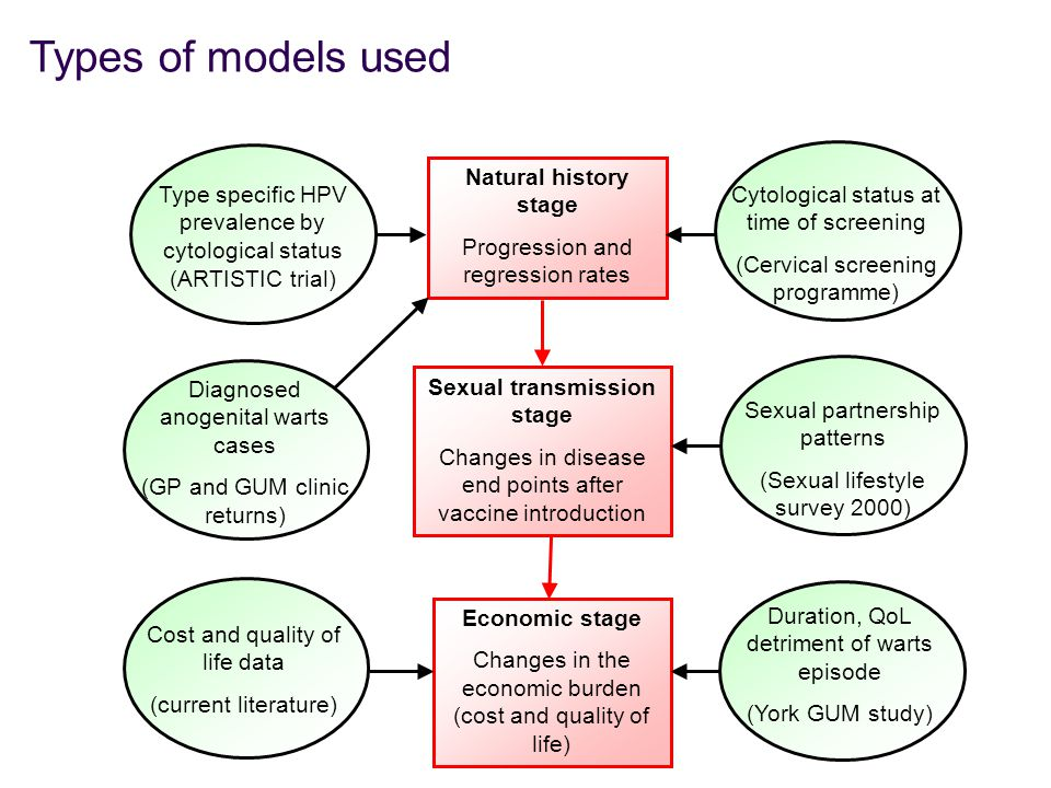 Sexual transmission stage Changes in disease end points after vaccine introduction Type specific HPV prevalence by cytological status (ARTISTIC trial) Natural history stage Progression and regression rates Economic stage Changes in the economic burden (cost and quality of life) Cytological status at time of screening (Cervical screening programme) Sexual partnership patterns (Sexual lifestyle survey 2000) Cost and quality of life data (current literature) Diagnosed anogenital warts cases (GP and GUM clinic returns) Duration, QoL detriment of warts episode (York GUM study) Types of models used