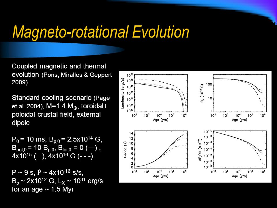 Magneto-rotational Evolution Coupled magnetic and thermal evolution (Pons, Miralles & Geppert 2009) Standard cooling scenario (Page et al.