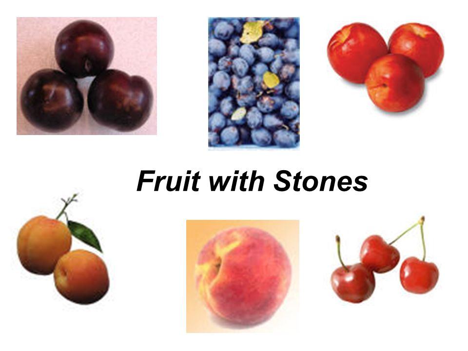 Fruit with Stones