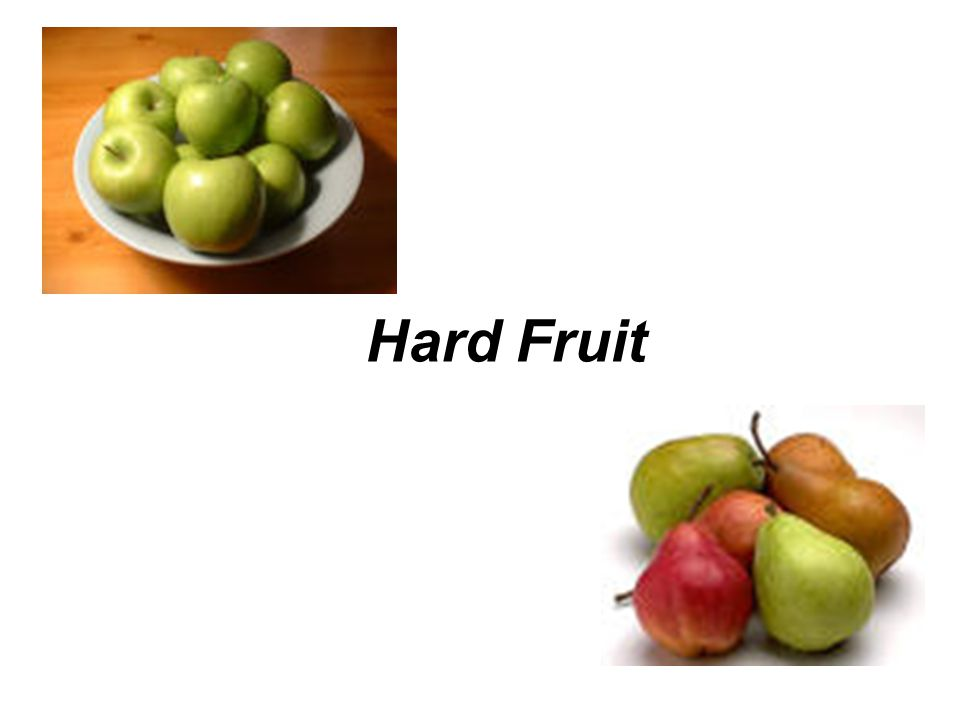 Hard Fruit