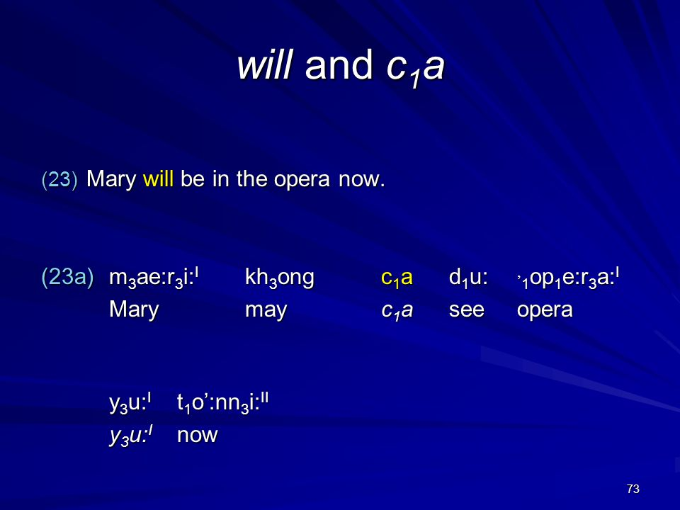 73 will and c 1 a (23) Mary will be in the opera now.
