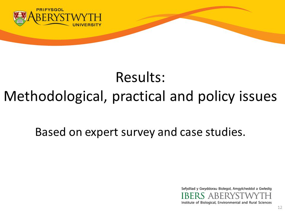 Results: Methodological, practical and policy issues Based on expert survey and case studies. 12