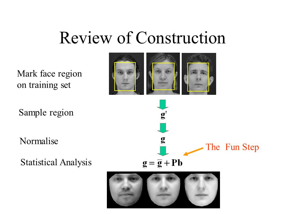 Review of Construction Mark face region on training set Sample region Normalise Statistical Analysis The Fun Step