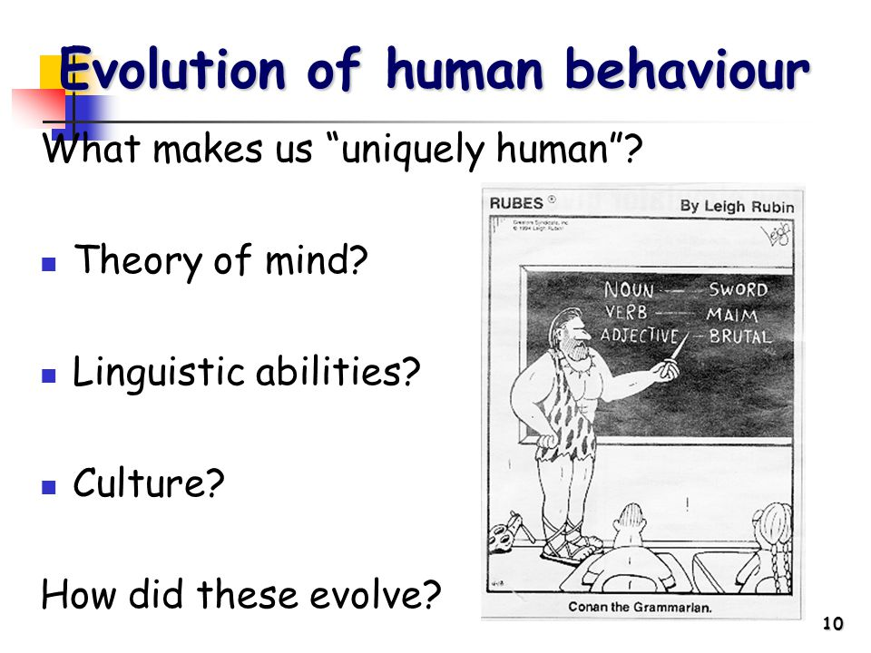 10 What makes us uniquely human . Theory of mind.