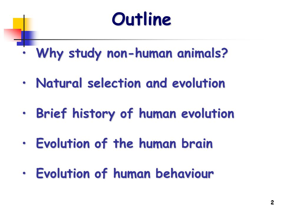 2 Outline Whystudy non-human animals Why study non-human animals.