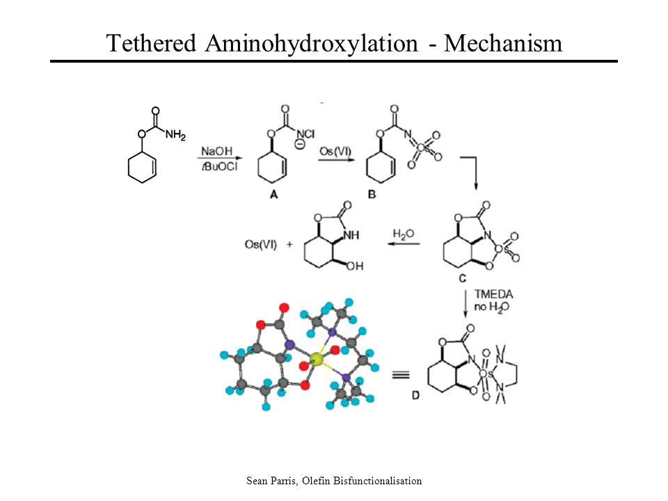 Sean Parris, Olefin Bisfunctionalisation Tethered Aminohydroxylation - Mechanism