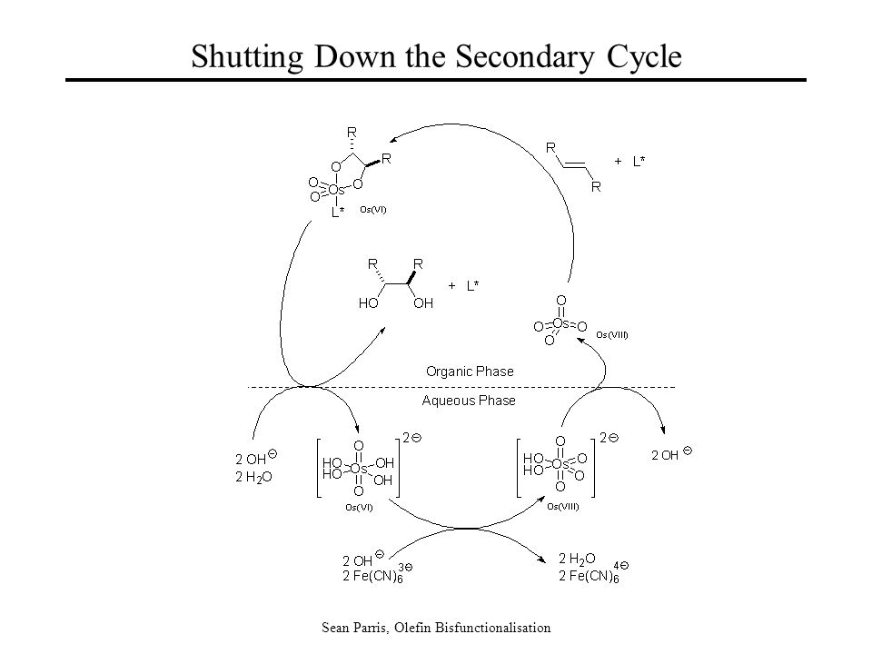Sean Parris, Olefin Bisfunctionalisation Shutting Down the Secondary Cycle