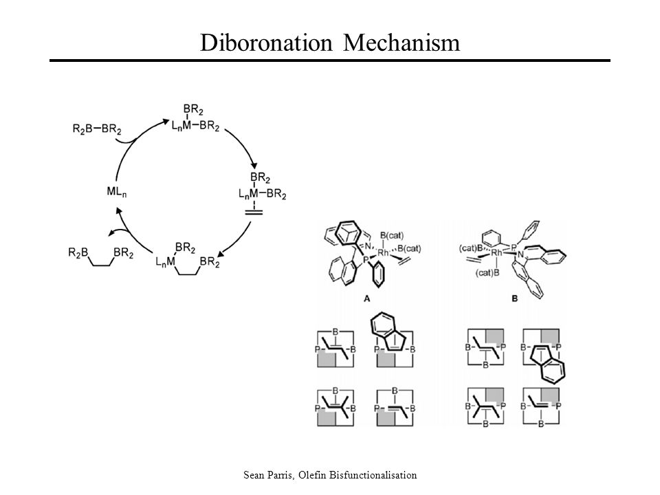 Sean Parris, Olefin Bisfunctionalisation Diboronation Mechanism