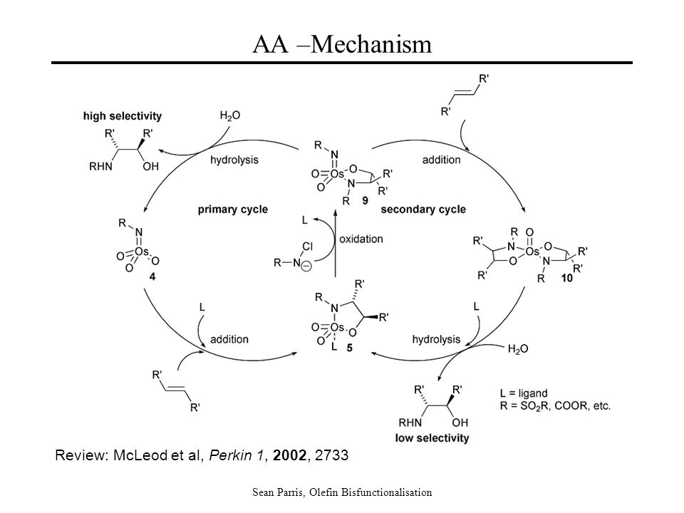 Sean Parris, Olefin Bisfunctionalisation AA –Mechanism Review: McLeod et al, Perkin 1, 2002, 2733