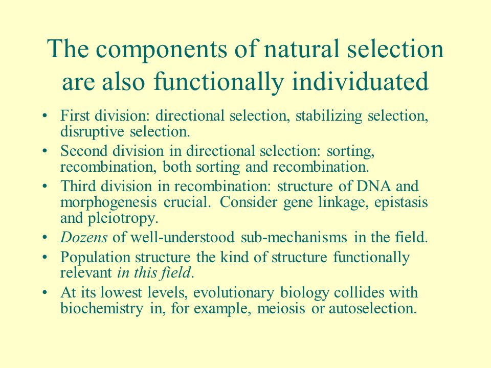 The components of natural selection are also functionally individuated First division: directional selection, stabilizing selection, disruptive selection.