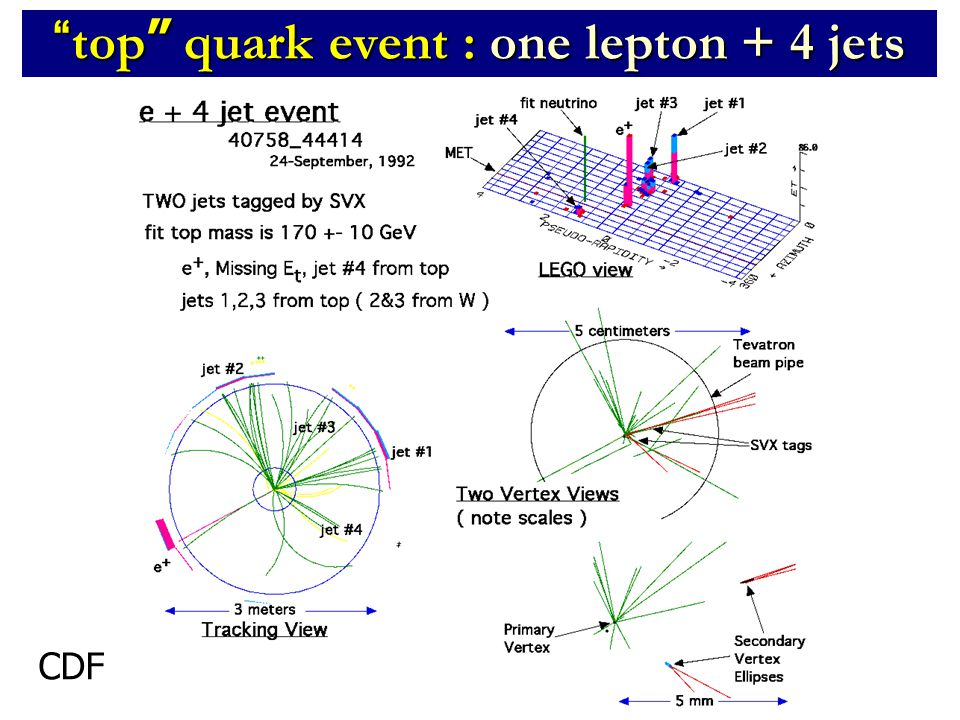 top quark event : one lepton + 4 jets CDF