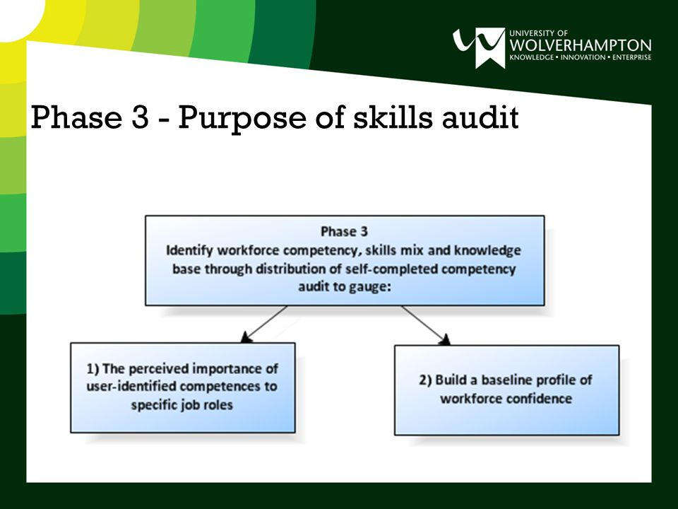 Phase 3 - Purpose of skills audit