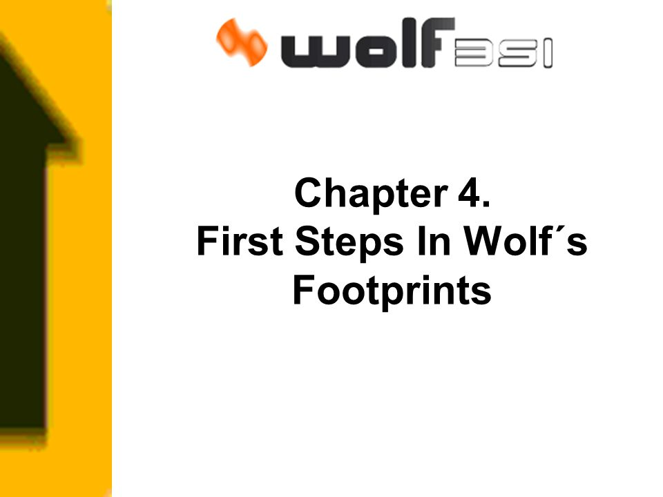 Chapter 4. First Steps In Wolf´s Footprints