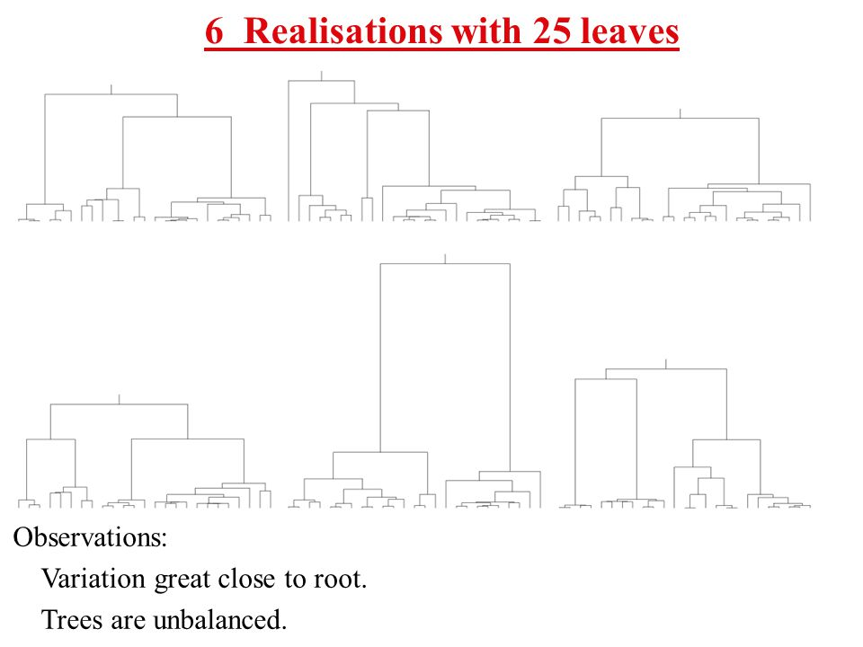 6 Realisations with 25 leaves Observations: Variation great close to root. Trees are unbalanced.