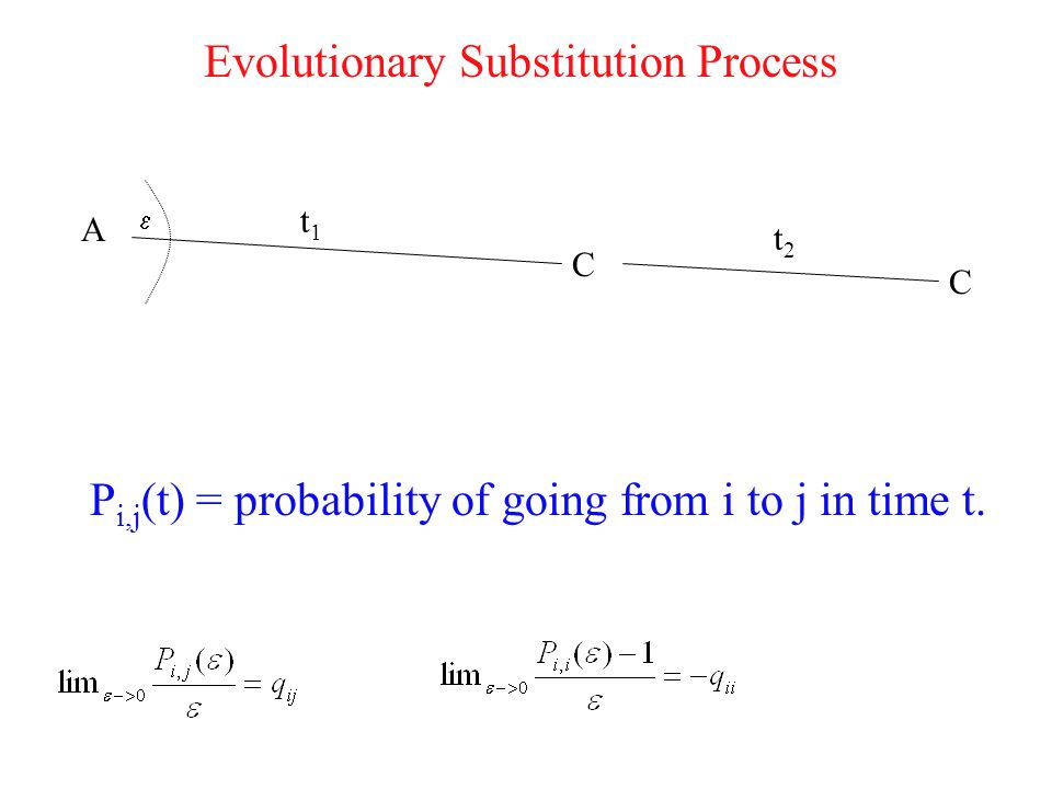 Evolutionary Substitution Process t1t1 t2t2 C C A P i,j (t) = probability of going from i to j in time t.