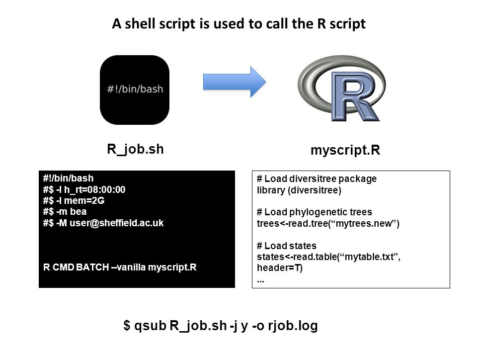 A shell script is used to call the R script #!/bin/bash #$ -l h_rt=08:00:00 #$ -l mem=2G #$ -m bea #$ -M user@sheffield.ac.uk R CMD BATCH --vanilla myscript.R # Load diversitree package library (diversitree) # Load phylogenetic trees trees<-read.tree( mytrees.new ) # Load states states<-read.table( mytable.txt , header=T)...