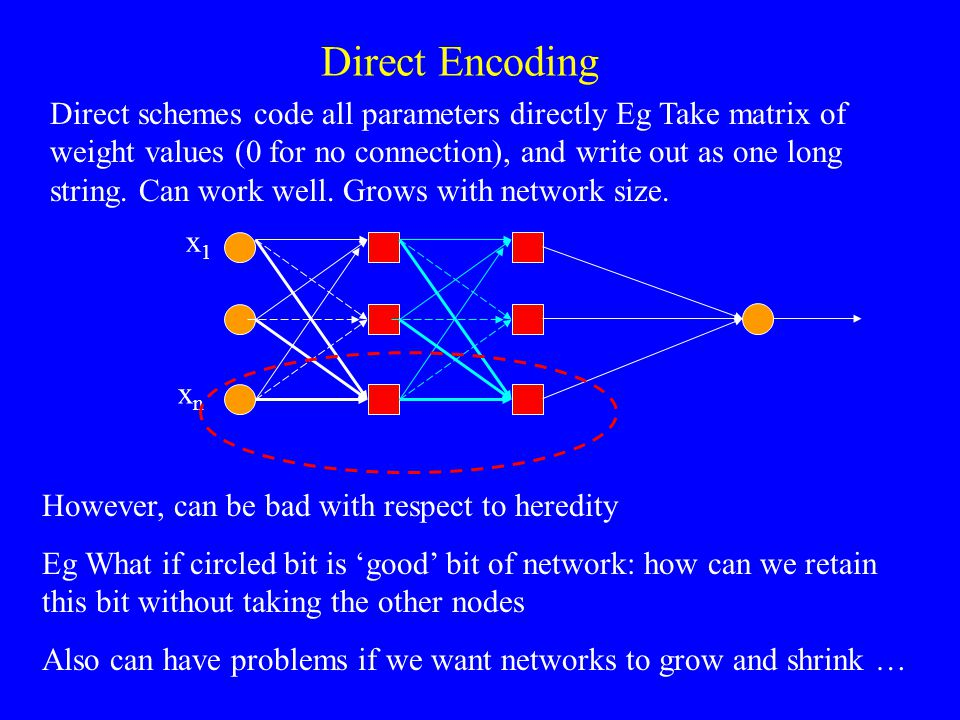 However, can be bad with respect to heredity Eg What if circled bit is 'good' bit of network: how can we retain this bit without taking the other nodes Also can have problems if we want networks to grow and shrink … x1x1 xnxn Direct Encoding Direct schemes code all parameters directly Eg Take matrix of weight values (0 for no connection), and write out as one long string.