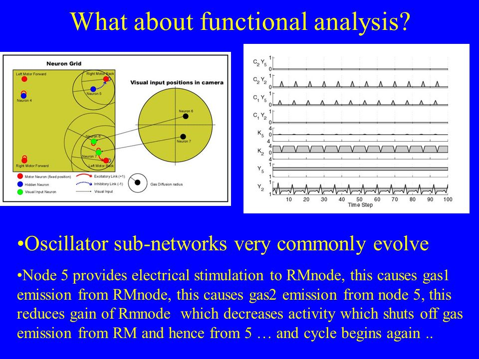 What about functional analysis.