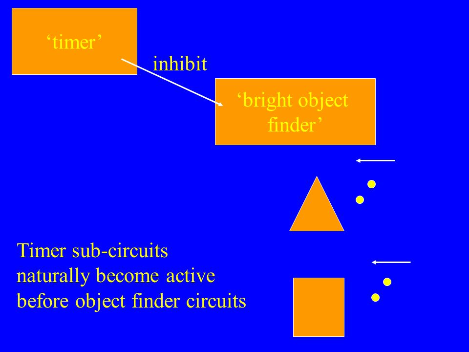 'timer' 'bright object finder' inhibit Timer sub-circuits naturally become active before object finder circuits