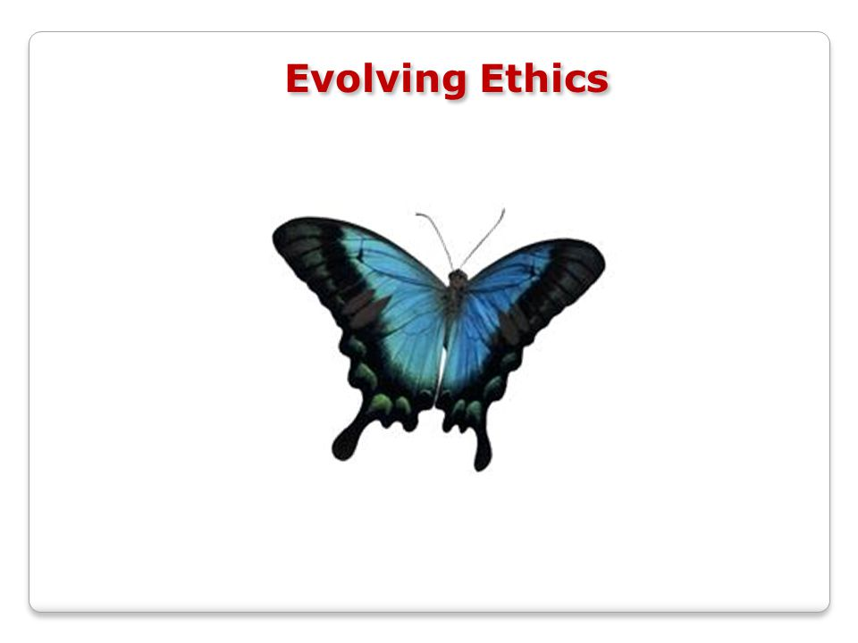 Evolving Ethics