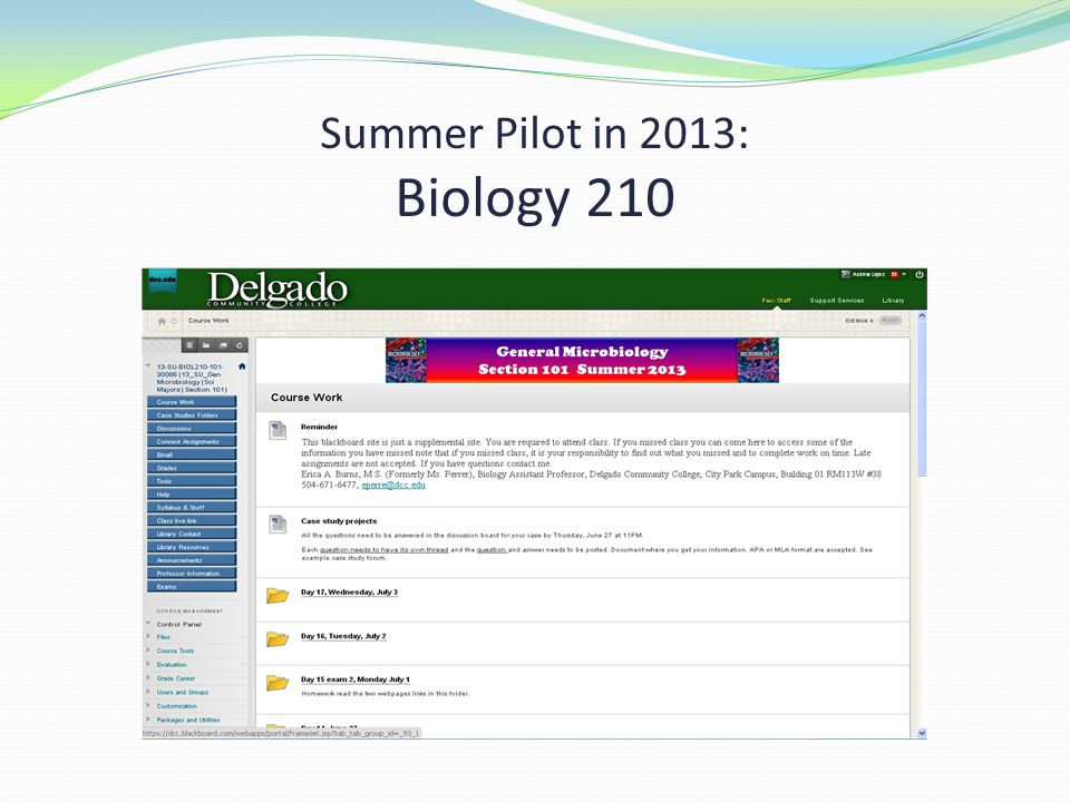 Summer Pilot in 2013: Biology 210