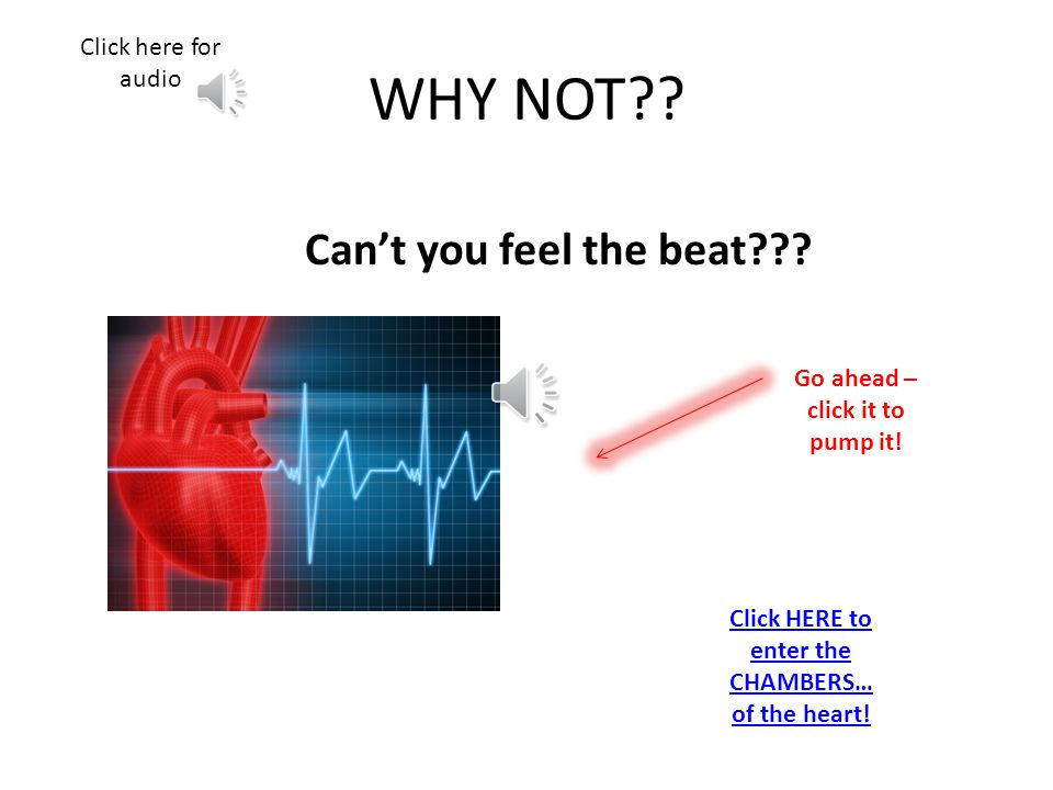 Great – FEEL THE BEAT!!! NEXT Click here for audio