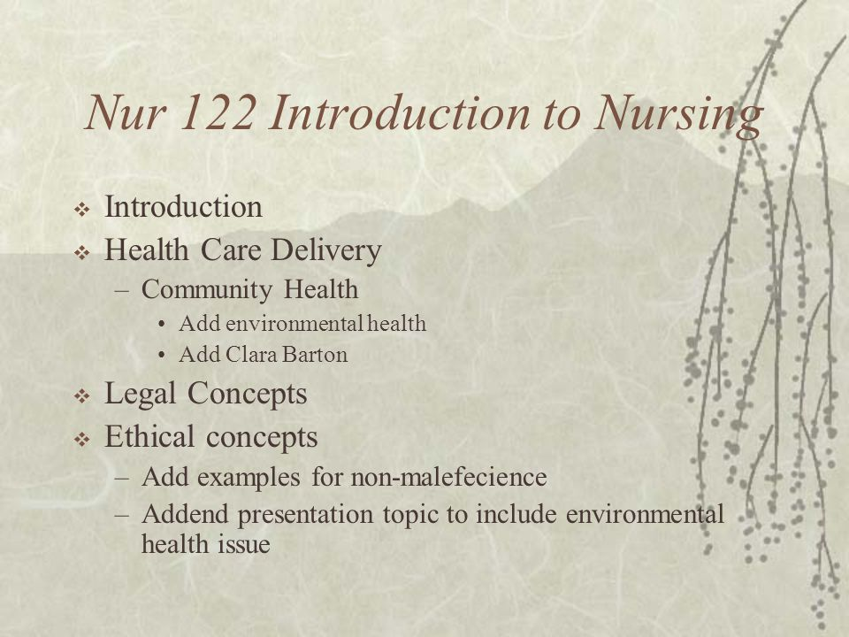 Nur 122 Introduction to Nursing  Introduction  Health Care Delivery –Community Health Add environmental health Add Clara Barton  Legal Concepts  Ethical concepts –Add examples for non-malefecience –Addend presentation topic to include environmental health issue