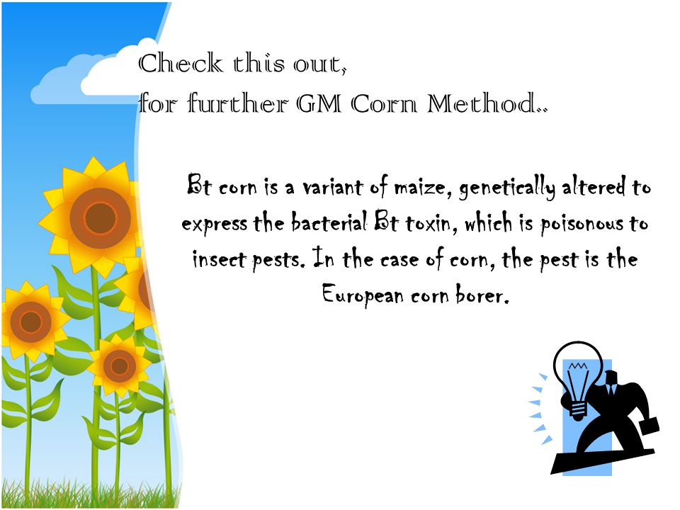 Check this out, for further GM Corn Method..