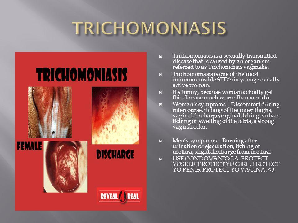 penis trichomoniasis)