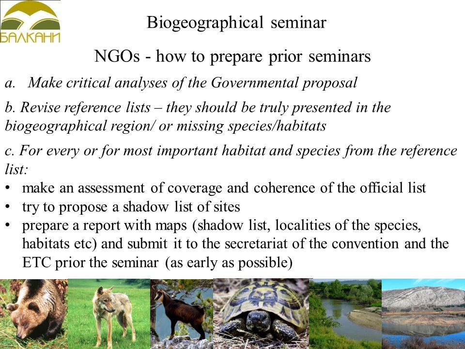 NGOs - how to prepare prior seminars a.Make critical analyses of the Governmental proposal b.