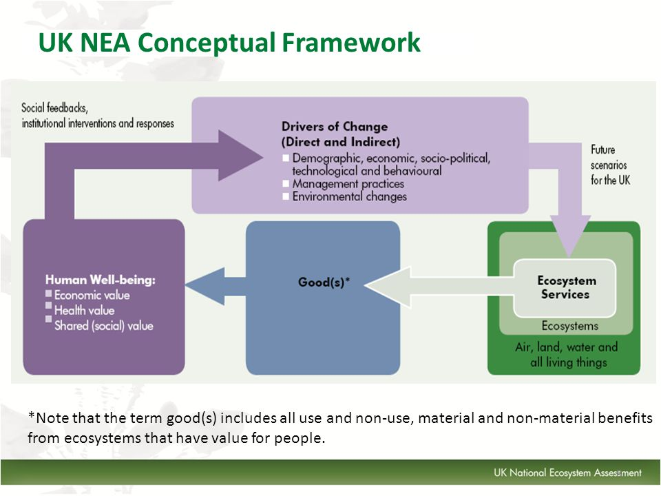 8 UK NEA Conceptual Framework REPLACE *Note that the term good(s) includes all use and non-use, material and non-material benefits from ecosystems that have value for people.