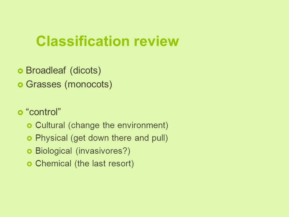 Classification review  Broadleaf (dicots)  Grasses (monocots)  control  Cultural (change the environment)  Physical (get down there and pull)  Biological (invasivores )  Chemical (the last resort)