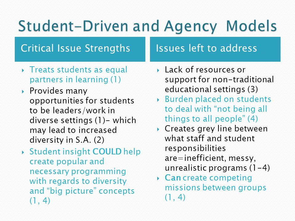 Critical Issue StrengthsIssues left to address  Treats students as equal partners in learning (1)  Provides many opportunities for students to be leaders/work in diverse settings (1)- which may lead to increased diversity in S.A.