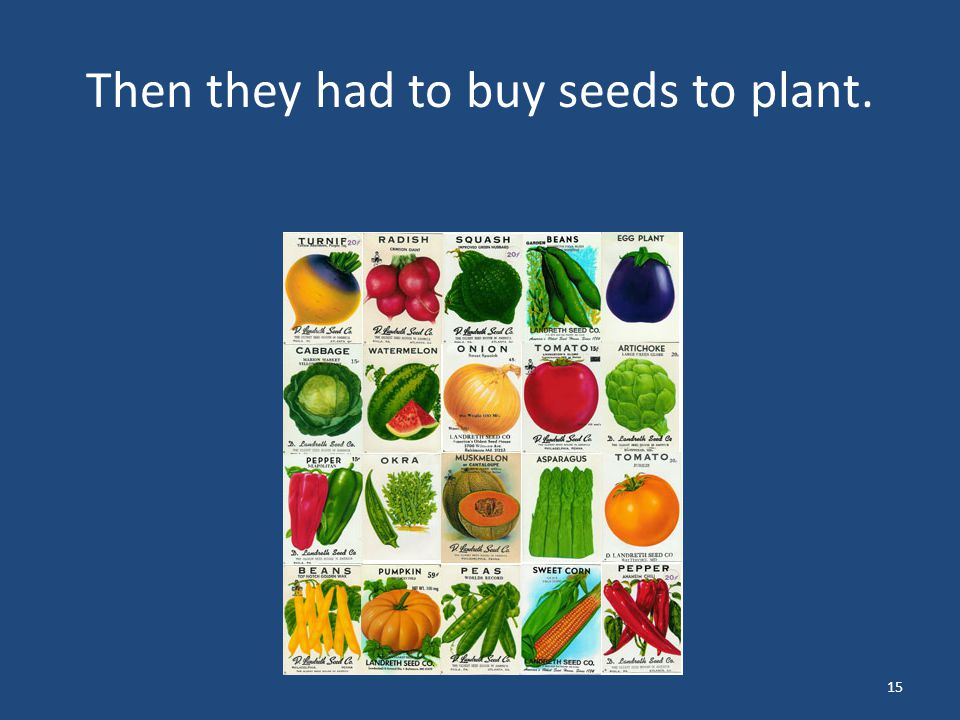 Then they had to buy seeds to plant. 15