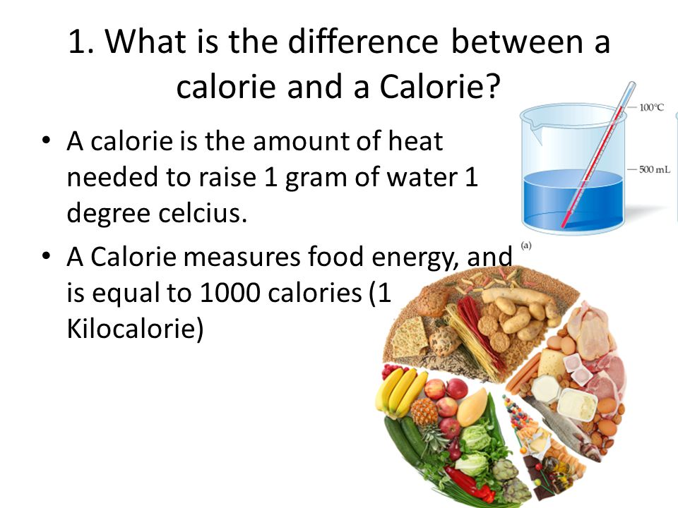 1. What is the difference between a calorie and a Calorie.