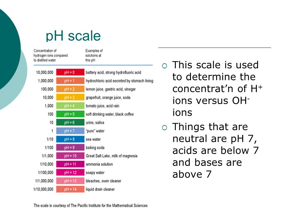 pH scale  This scale is used to determine the concentrat'n of H + ions versus OH - ions  Things that are neutral are pH 7, acids are below 7 and bases are above 7