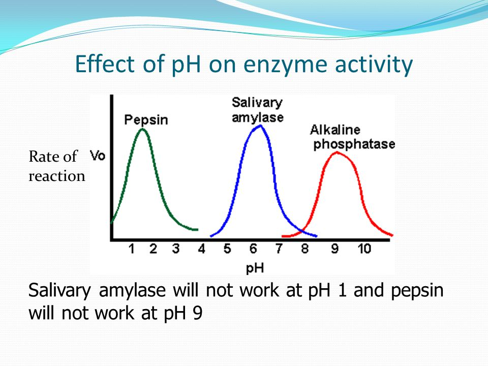 Effect of pH on enzyme activity Salivary amylase will not work at pH 1 and pepsin will not work at pH 9 Rate of reaction