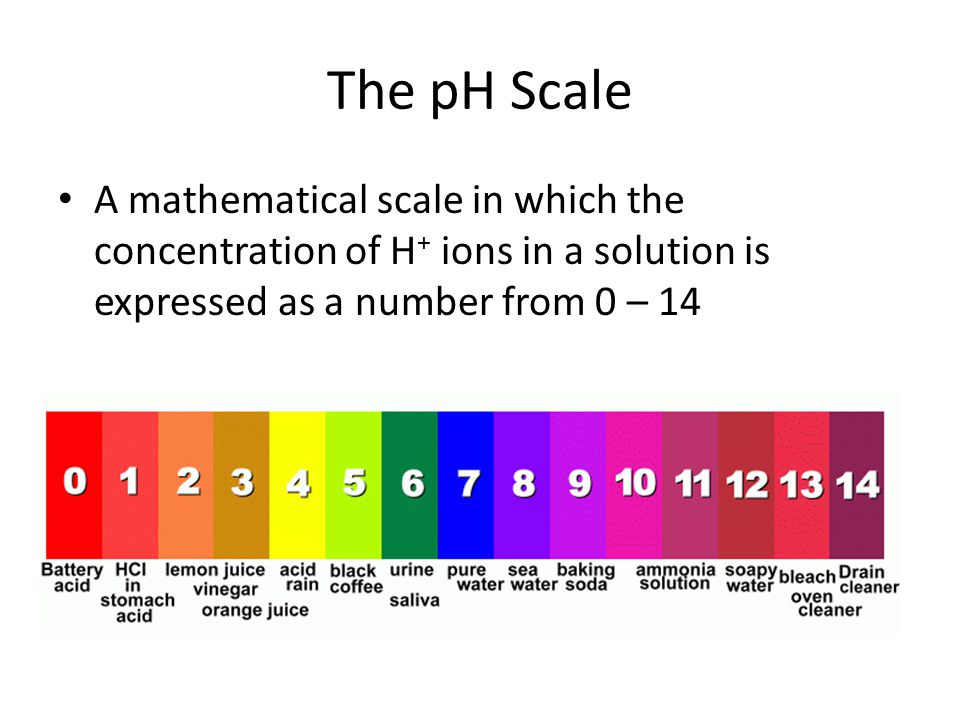 The pH Scale A mathematical scale in which the concentration of H + ions in a solution is expressed as a number from 0 – 14