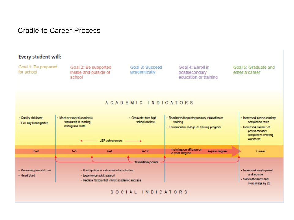 Cradle to Career Process