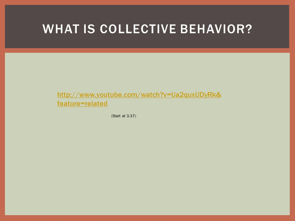 WHAT IS COLLECTIVE BEHAVIOR.