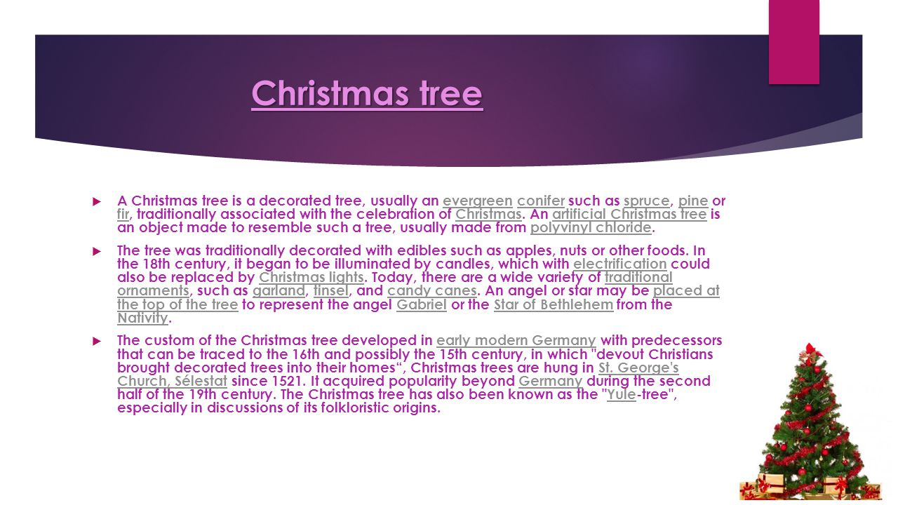 Christmas tree  A Christmas tree is a decorated tree, usually an evergreen conifer such as spruce, pine or fir, traditionally associated with the celebration of Christmas.
