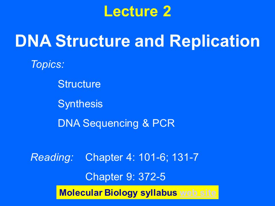 Lecture 2 DNA Structure and Replication Topics: Structure Synthesis DNA Sequencing & PCR Reading: Chapter 4: 101-6; 131-7 Chapter 9: 372-5 Molecular Biology syllabus web siteweb site
