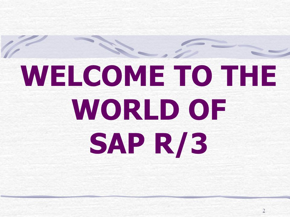 2 WELCOME TO THE WORLD OF SAP R/3 2