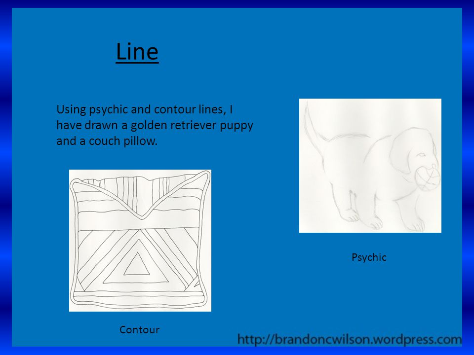 Line Using psychic and contour lines, I have drawn a golden retriever puppy and a couch pillow.