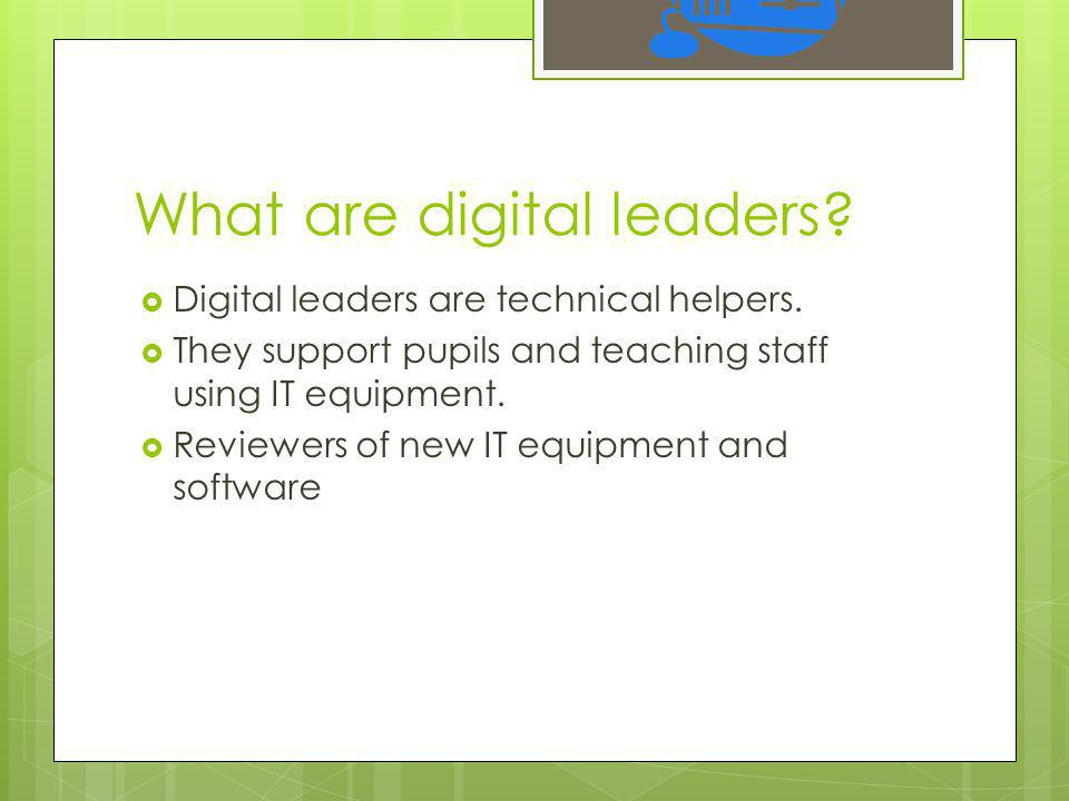 What are digital leaders.  Digital leaders are technical helpers.