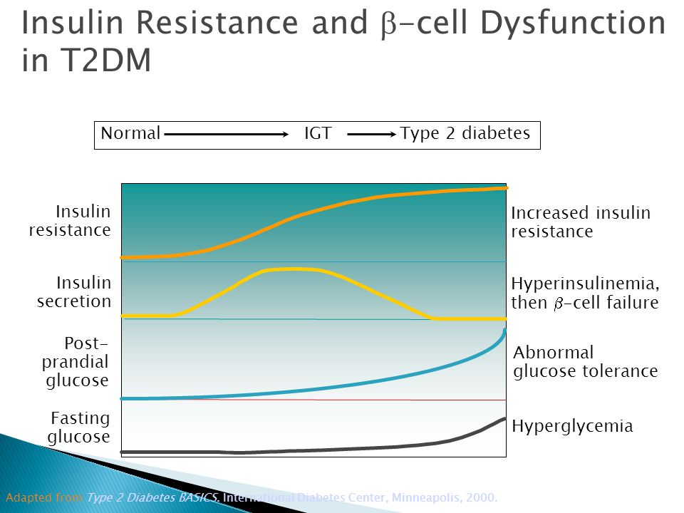 Normal IGTType 2 diabetes Post- prandial glucose Abnormal glucose tolerance Insulin resistance Increased insulin resistance Fasting glucose Hyperglycemia Insulin secretion Hyperinsulinemia, then  -cell failure Adapted from Type 2 Diabetes BASICS.
