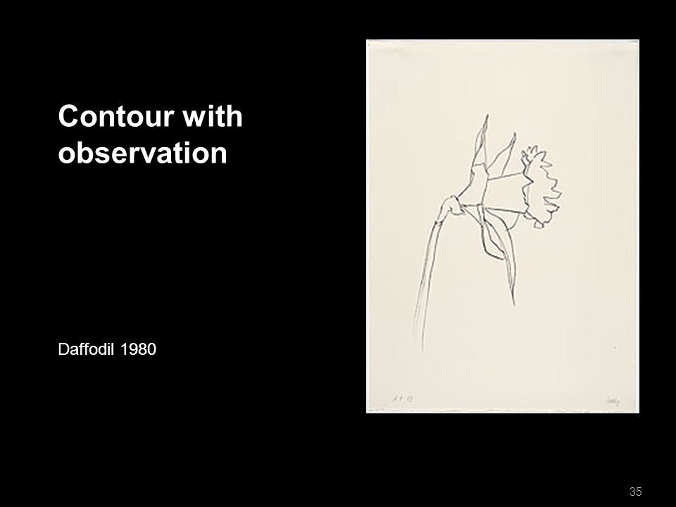 Contour with observation Daffodil 1980 35